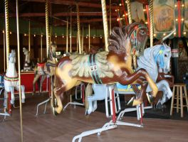 Gage Park Carousel 3 by Falln-Stock