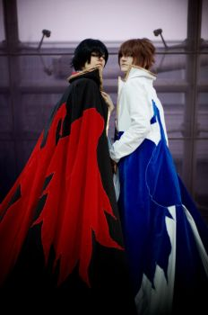 Code Geass: Lelouch and Suzaku by AgitoAkitoWanijima