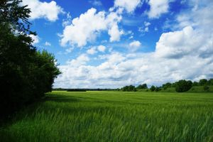 Over the fields by FeliDae84