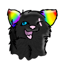 Rainbow by intoxicated-with-paw