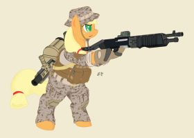 Warfighter Applejack by Miniyippo