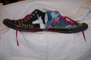 Charlie The Unicorn Converses by InuYasha-Queen