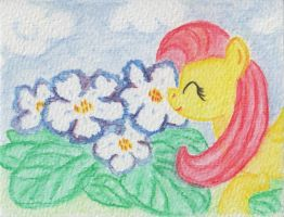 Sniffing Flowers by Airtower