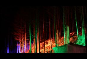 Subzero Forest by emograph