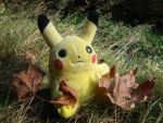 wild pikachu appeared by Maili-Janousek
