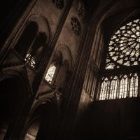 The light and the shadow by JakezDaniel