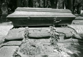 the coffin. by IchibanWolf