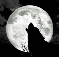 Night of the Shewolf by ClintEastwood2