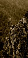 Tree on a Cliff Face by xofox