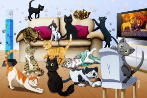 13 Cats by Shaami