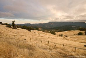 California Hills by austinboothphoto