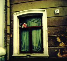 Blumenfenster. by toastntea
