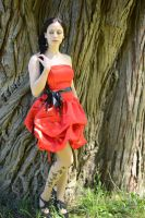 Red Satin 28 by Anariel-Stock