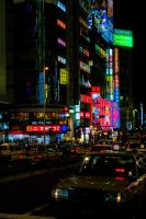 Neons in Shinjuku by Ricque
