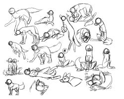 Wolf Pose Sketches by SuperCrome