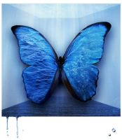 Blue Butterfly by M0rtishA
