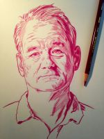 Bill Murray by JasonKoza