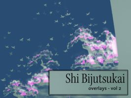 Shin-Bijutsukai: overlays 2 by remittancegirl