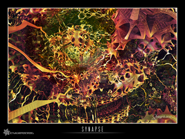 Synapse by raysheaf
