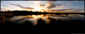 Sunset on the pond by andyrogerson