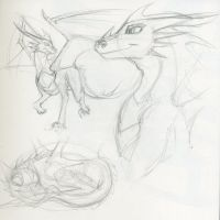 Dragon studies 2 by LyricaBelachium