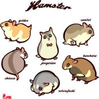 Sheet:hamsters by mofuwa