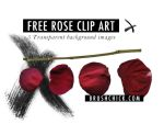 Free Clip Art, Rose Petals by brushchick