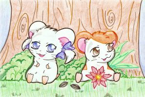 Prize Art - Hamtaro and Bijou by angel-of-time