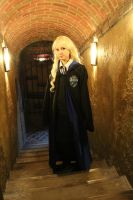 HP: In the corridors of Hogwarts by Vestal-Spirit