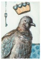 Pidgeon Prince ACEO by AshleighPopplewell