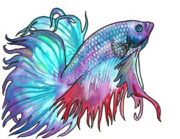 watercolor betta by jupiterjenny