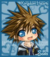 Kingdom Hearts- Sora by snowbunnyluv