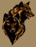 Timber wolfs by sky-n-black