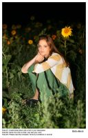In The Sunflowers.2 by Della-Stock