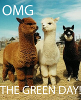 OMFG GREEN DAY by vicvictip