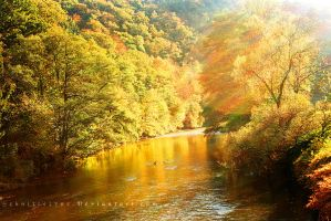 Autumn River by ElyneNoir