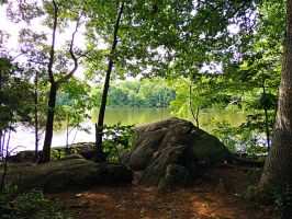 Lakeside Trail Rock Formation 04 by TemariAtaje
