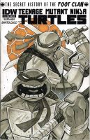 TMNT Leo and Don IDW sketch cover by Red-J