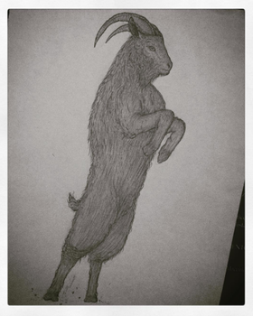 First try to draw Black Phillip from 'The Witch' by valleytroll