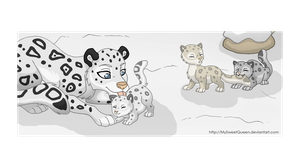 Snow Leopard Family by MySweetQueen