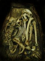 Skeleton Mummy by lady-of-the-sea