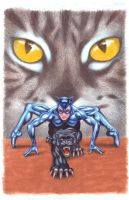 catwoman 2 by skillman