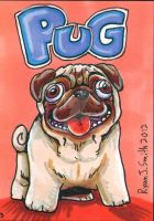 ACEO Dog 3: Pug by ronnieraccoon