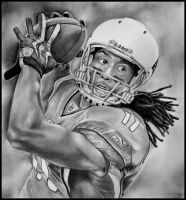 Larry Fitzgerald by 280807