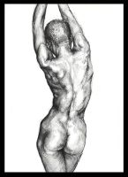 Femal Back Nude Ink by MalachiDesigns