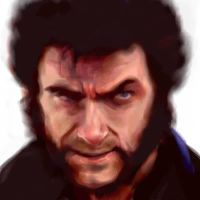 The Wolverine by Marine84
