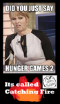 Hunger games 2 NO by Flangee