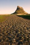 Holy Island Castle by scotto