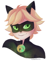 Chat Noir by wishkoi