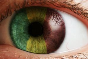 Rasta Eye by surferdudde8016